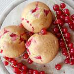 Ribisel Muffins